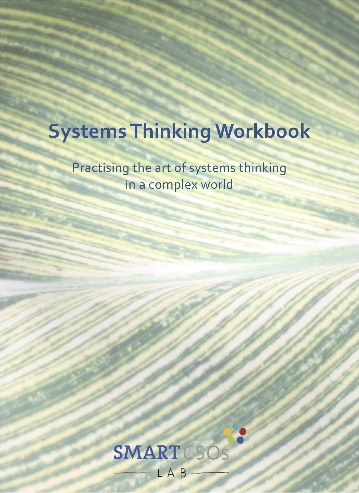 Front cover of the Systems Thinking Workbook
