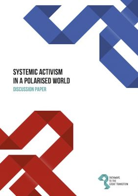 Systemic Activism in a Polarised World: Discussion Paper